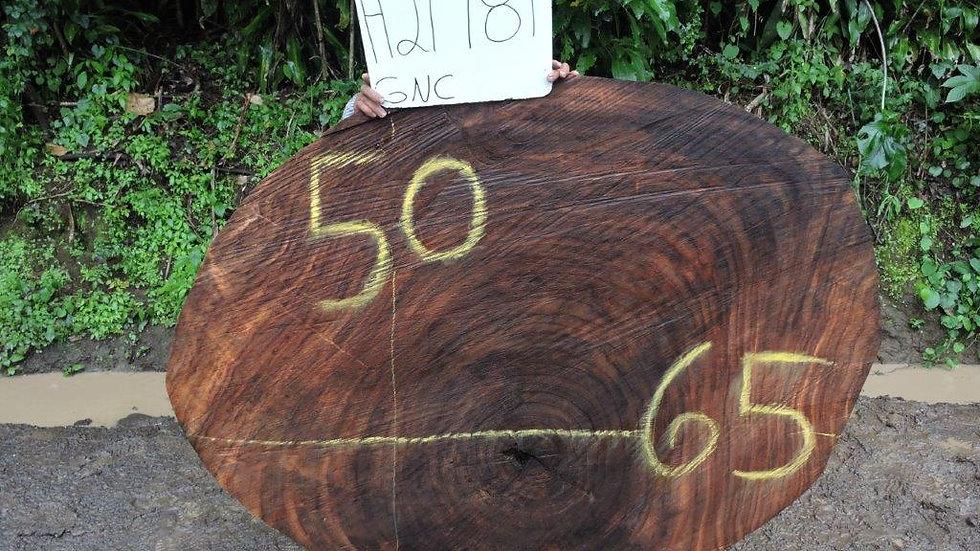 H21981 Parota Wood