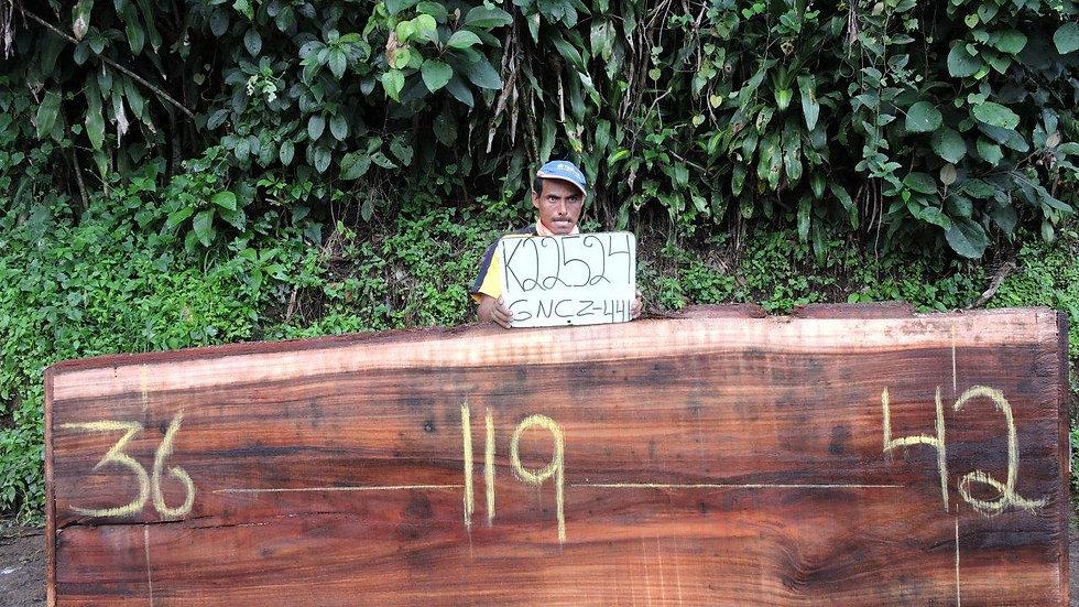 K22524 Parota Wood