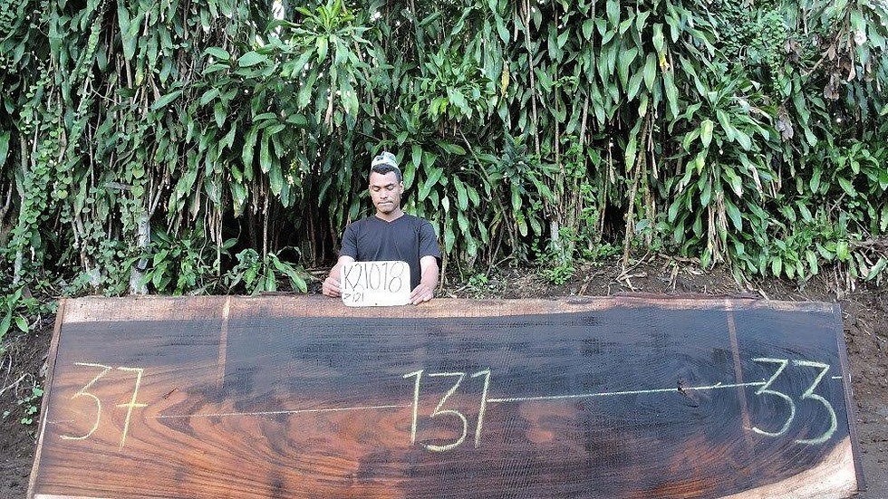 K21018 Parota Wood