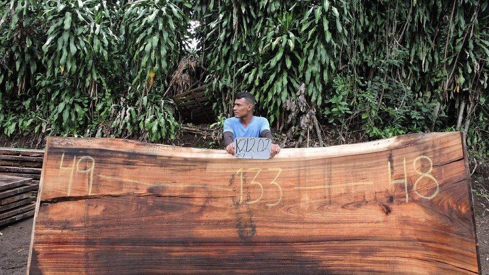 K21202 Parota Wood