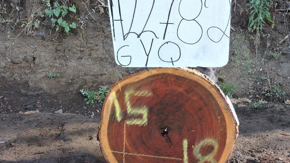 H22782 Chime Wood X Cut