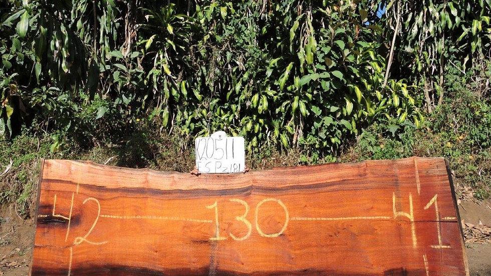 J20511 Wild Cashew/Espavel Wood