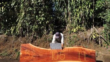 K27750 Quebracho Wood Slab