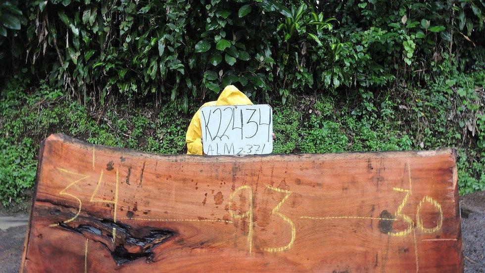 K22434 Tropical Almond Wood