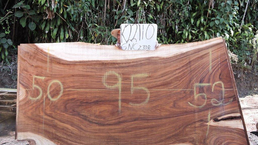 K22110 Parota Wood