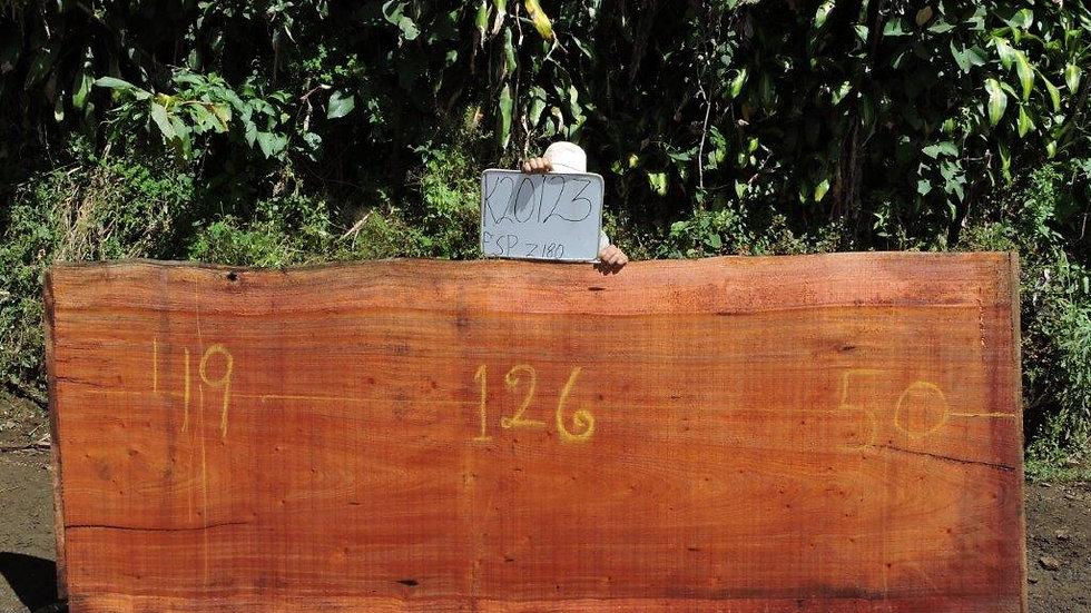 K20123 Wild cashew/Espavel Wood