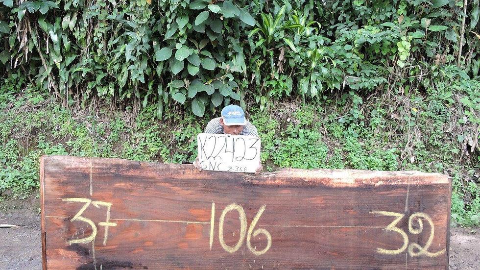 K22423 Parota Wood