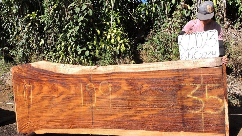 K22023 Parota Wood
