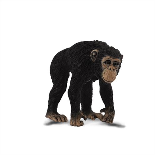 CollectA - Chimpanzee female
