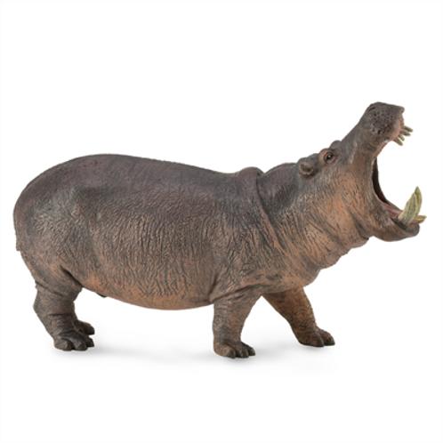 CollectA - Hippopotamus