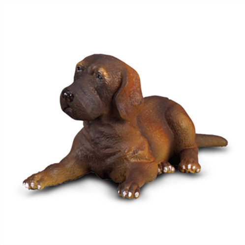 CollectA - Great dane puppy