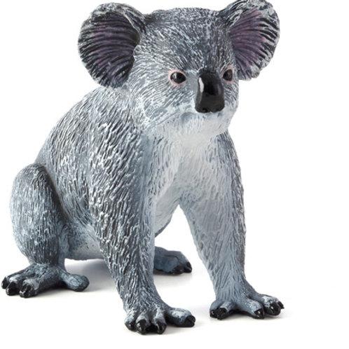 Animal planet - Koala bear