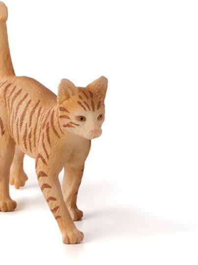 Animal Planet - Cat ginger tabby