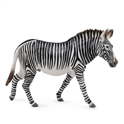 CollectA - Grevvy's Zebra