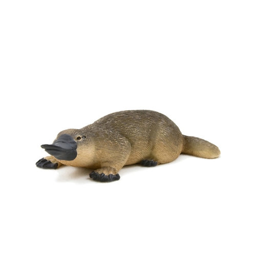 Animal planet - Duck billed platypus