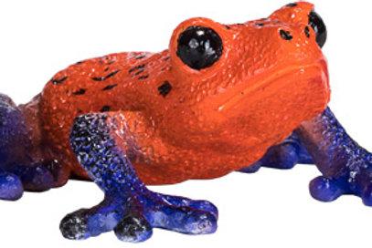 Animal planet- Poison dart frog