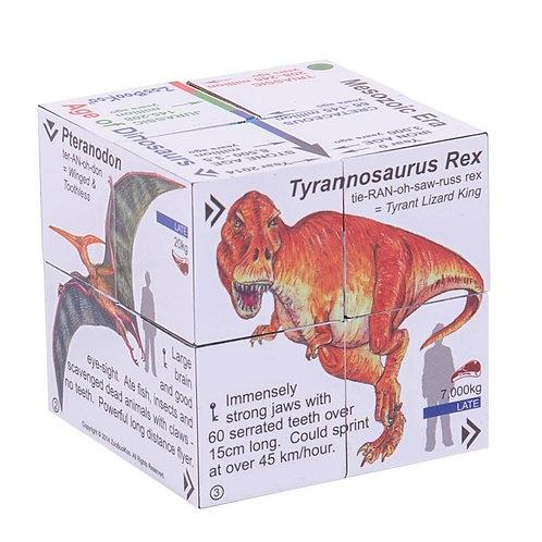 Bigjigs learning cube book dinosaurs