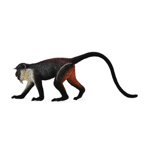 CollectA - Diana monkey