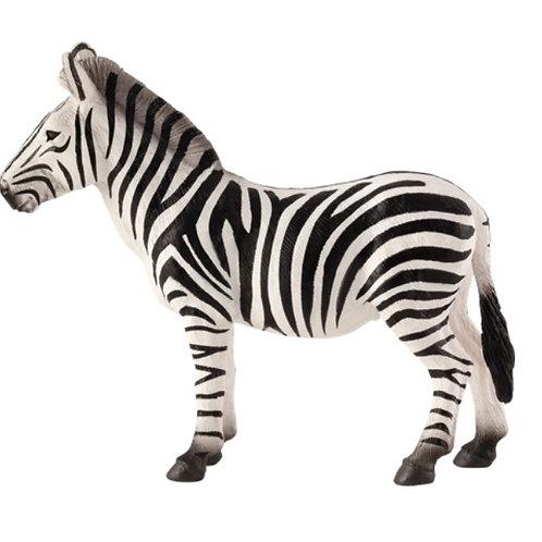 Animal Planet - Zebra