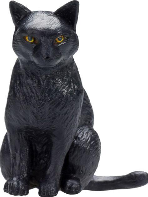 Animal Planet - Black cat sitting