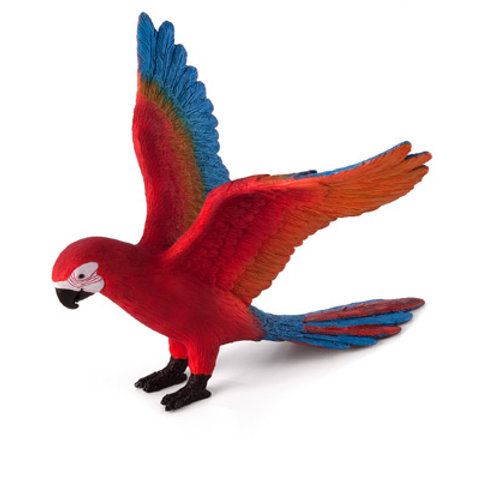 Animal planet - Parrot