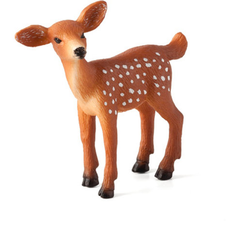 Animal planet - White tailed deer fawn