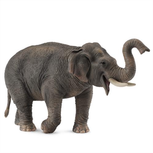 CollectA - Asian elephant