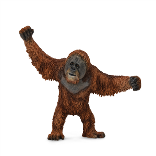 CollectA - Orangutan
