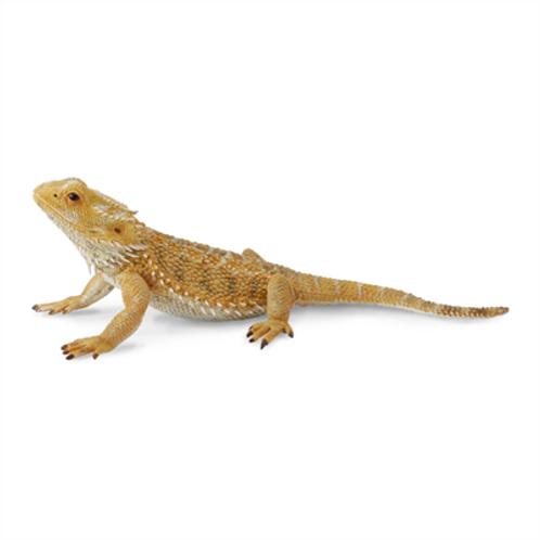 CollectA - Bearded dragon