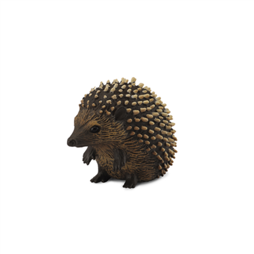 CollectA - Hedgehog