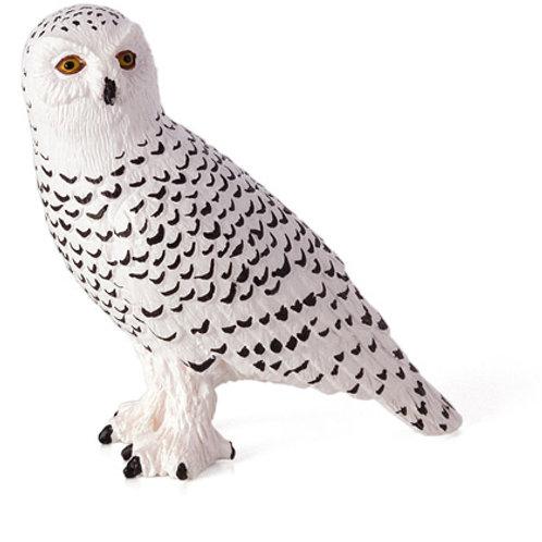Animal Planet - Snowy Owl