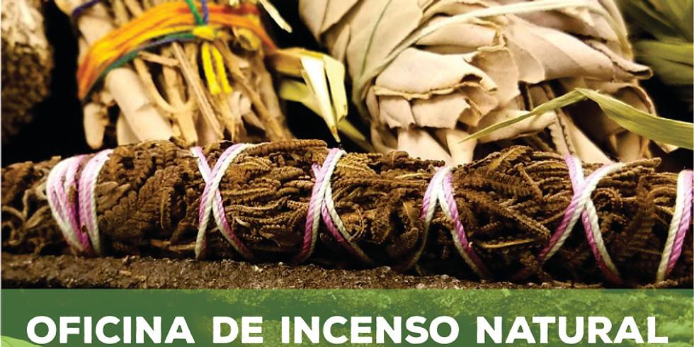Oficina de Incenso Natural - Smudge Stick