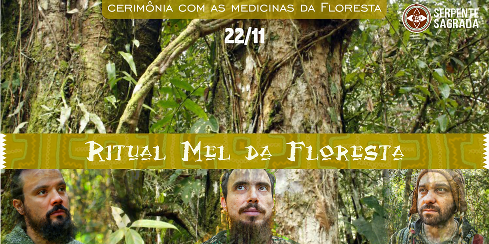 Ritual Mel da Floresta com banda Shamani