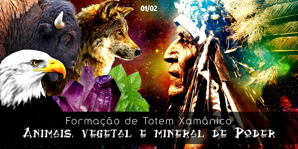 Formação de Totem Xamânico - Animais, Vegetal e Mineral de Poder