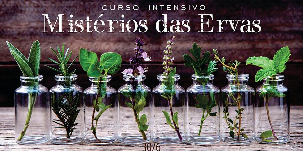 Curso Intensivo - Mistérios das Ervas