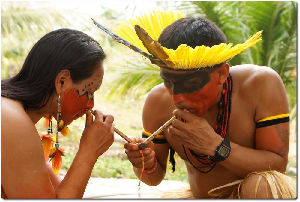 rapé medicina indígena
