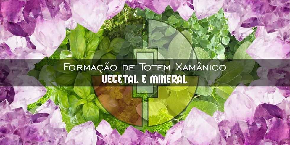 Formação de Totem Xamânico - Vegetal e Mineral