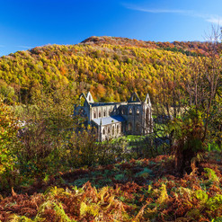 Did you know...in 1535 Tintern Abbey had an annual income of 192 pounds, making it the wealthiest monastery in Wales.
