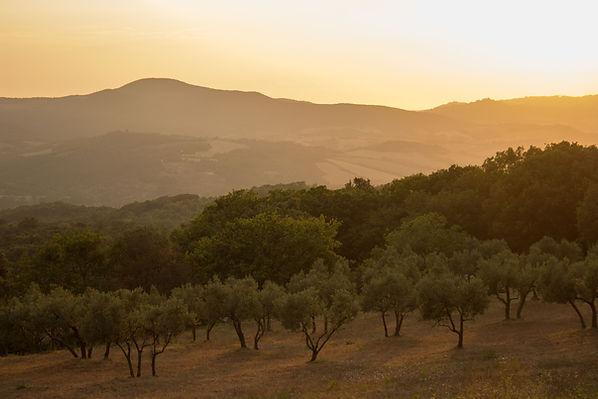 vacances équestres dans le Gard