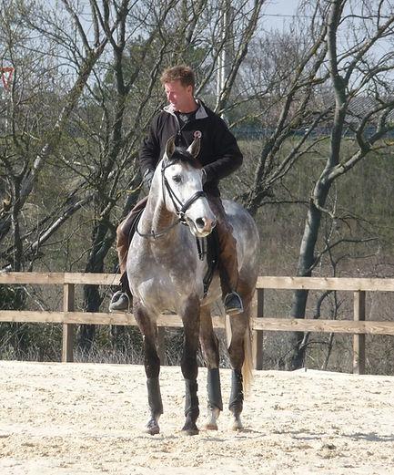 Les Écuries d'Artuzac dressage de chevaux Alès