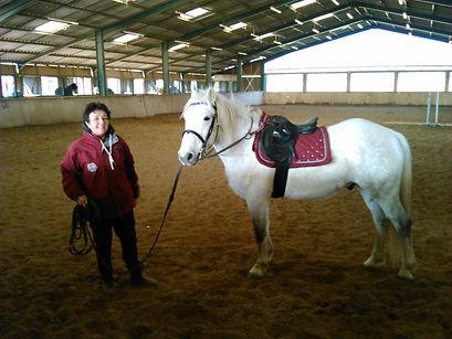 Les Écuries d'Artuzac redressage cheval difficile Alès