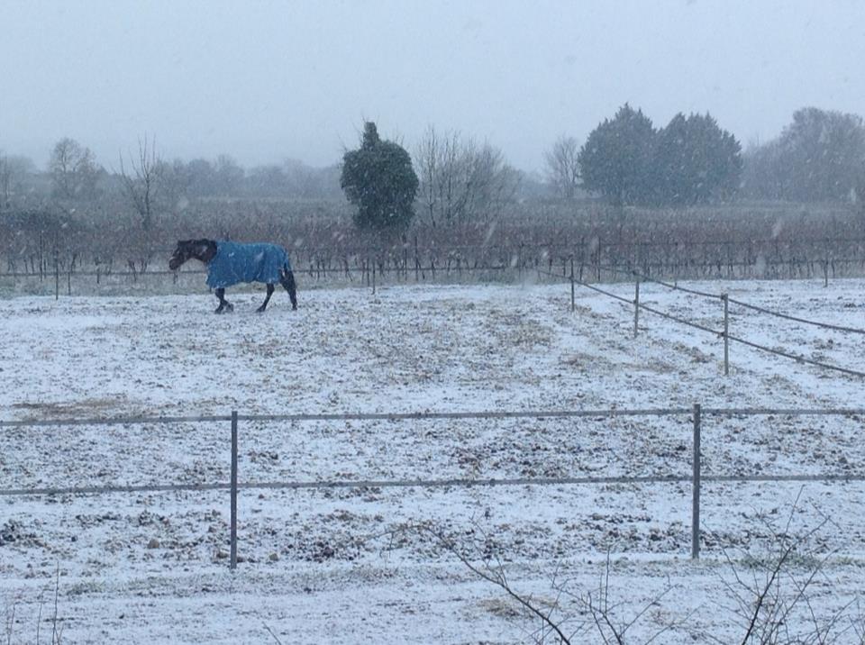 Bel hiver neigeux à Artuzac (c'est rare !)
