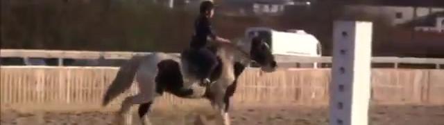 Cours collectif de saut d'obstacle aux Écuries d'Artuzac