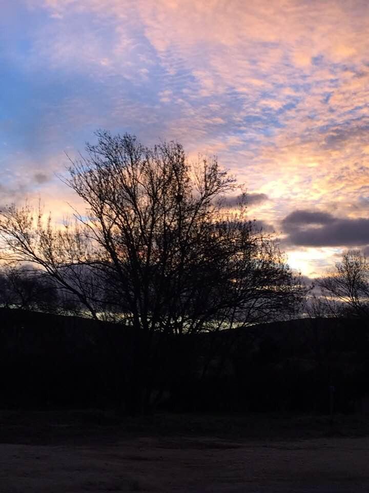Lever de soleil pastel hivernal
