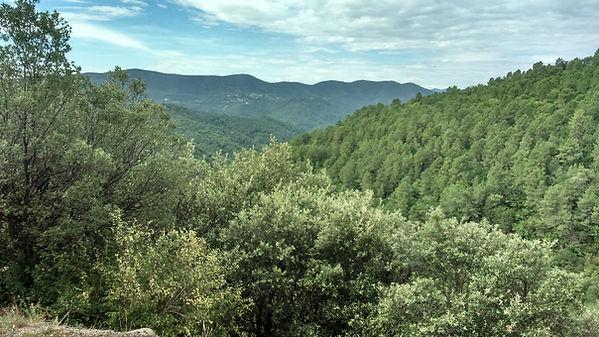Les Écuries d'Artuzac en pleine nature près d'Alès