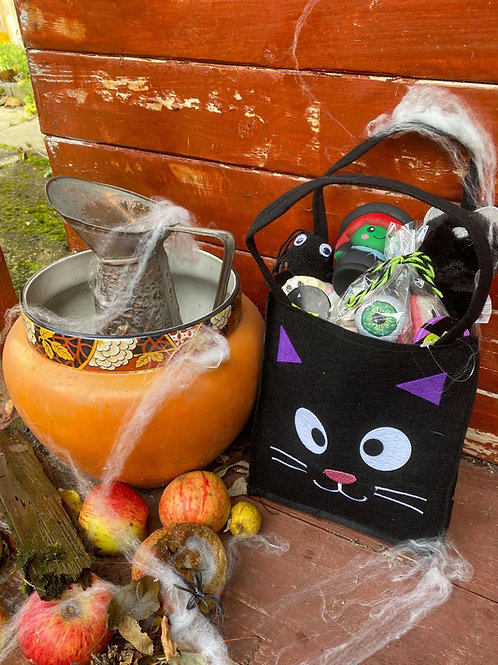 Witches Cat Trick Or Treat Bag