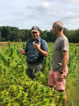 Organic Seed to Sale Process on Farm