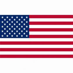 Vlag USA-500x500