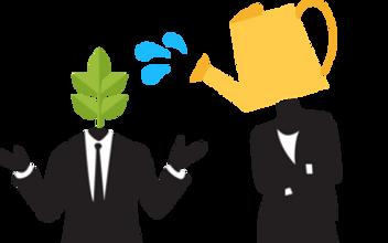 mentorimagecrop.png