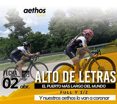 logo aethos webArtboard 50 copy_2x.png.p